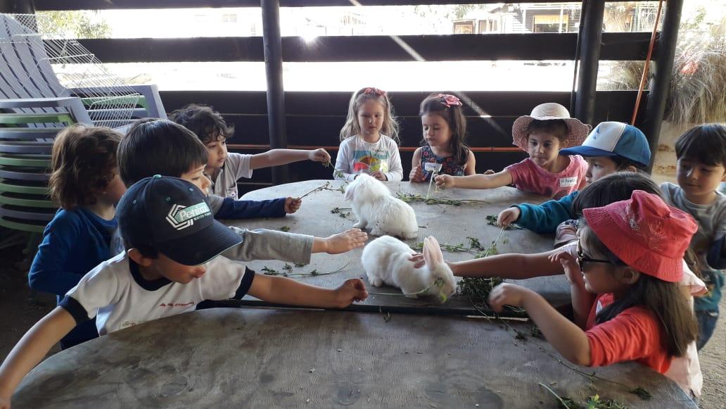 Salida pedagógica a la granja (Moyenne section)