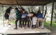 Salida Pedagógica de Terminale al Refugio Las Ermitas de Farellones